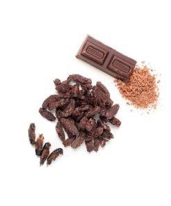 Grillos recubiertos de chocolate Eat Crawlers producto