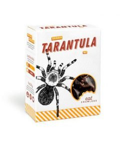 Tarantula cebra Eat Crawlers
